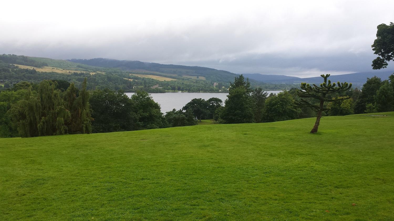 Spaziergang im Park, safftige Wiesen, hinter einer Mauer aus Bäumen sieht man den See